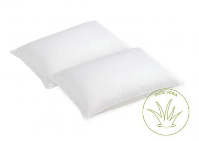 Evercomfy Aloe Vera Pillows (Pair)