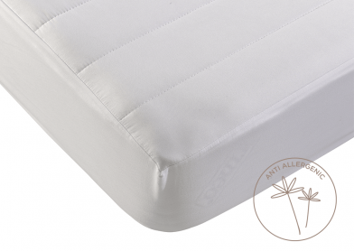 Evercomfy Anti-Allergy Mattress Protector