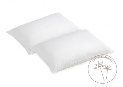 Evercomfy Anti-Allergy Pillows (Pair)