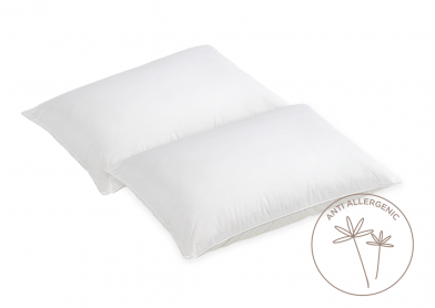 Evercomfy Anti-Allergy Pillows (Pair)