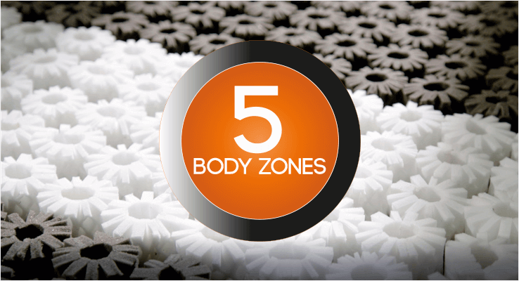 5 Body Zones
