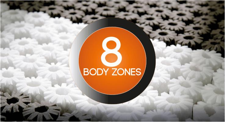 8 Body Zones